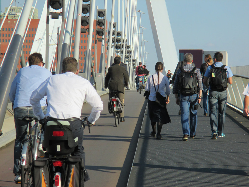 2014 Netherlands cycling study tour