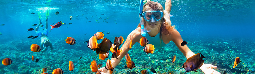 Image of people snorkelling